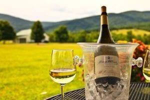 witte wijn snel koelen