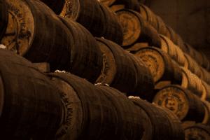 hoe is wijn ontstaan